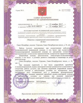Лицензия1 3